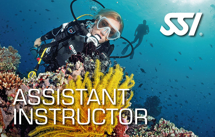 SSI Assistant Instructor